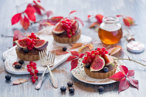 Chocolate tarts with figs by The Little Squirrel
