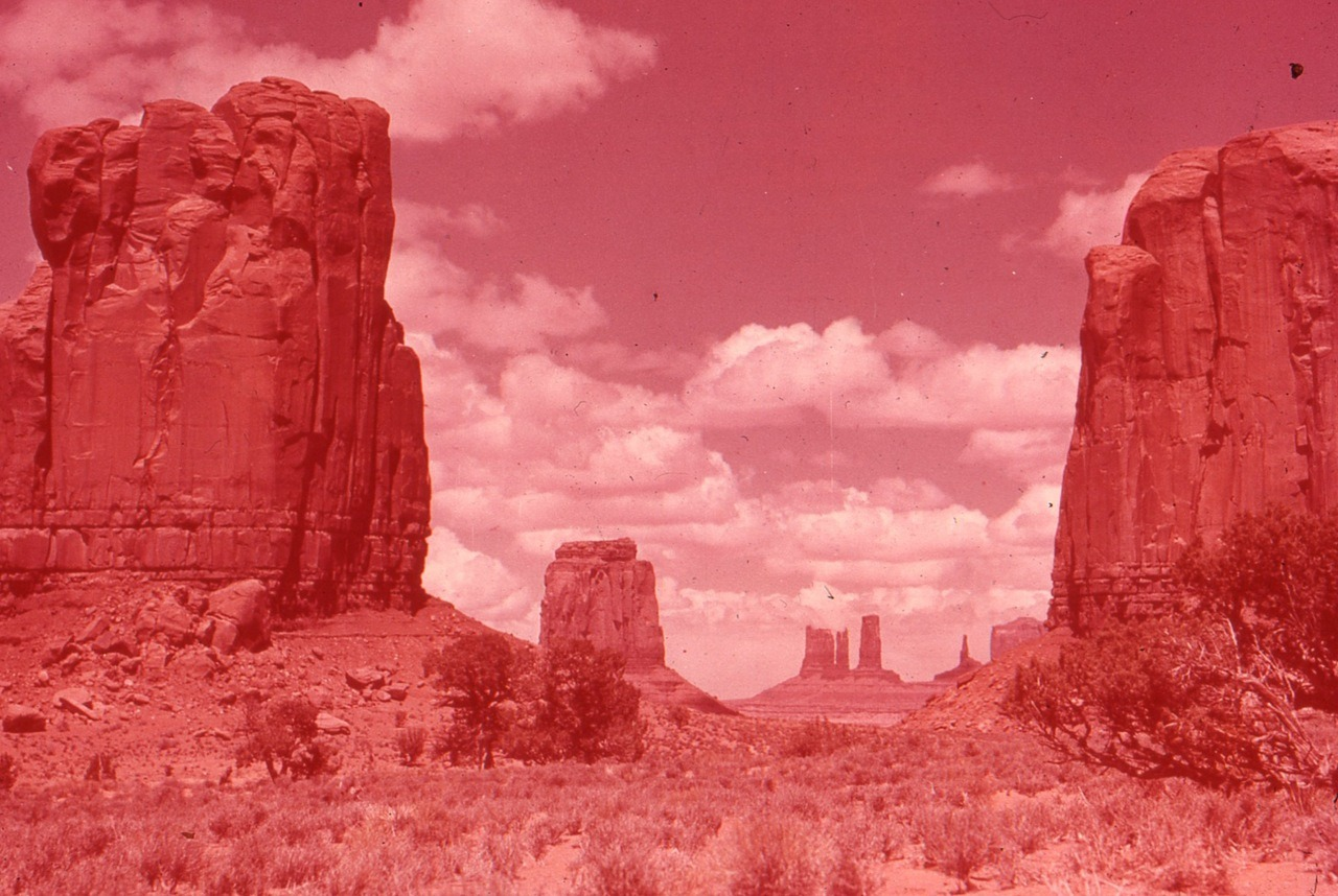 Red things, taken by my paw paw in the 1960s