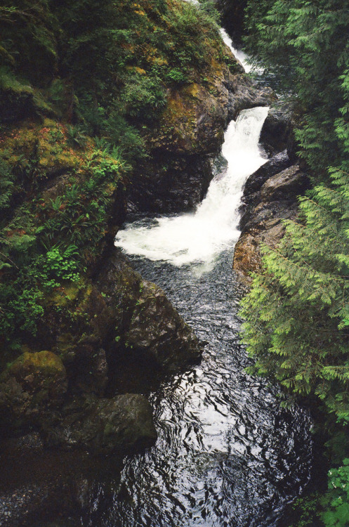 anadventurous-spirit:  (by elias.and.theresa.carlson)
