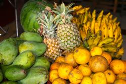 love fresh tropical fruits