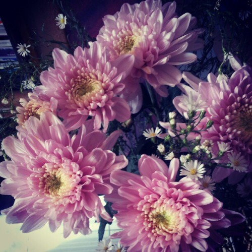 Flowers for the altar (Taken with Instagram)