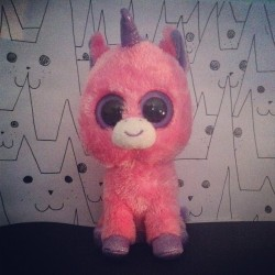 illustriousunknown:  Lui è Barbabietola 💜 #unicorn #bigeyes #cute #pink #love #barbabietola #istanlove #cats (Scattata con Instagram)