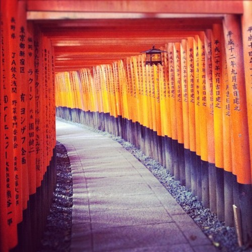 jendileau:  Fushimi Inari. #kyoto #japan #latergram #gates (Taken with Instagram at 伏見稲荷駅 (Fushimi-Inari Sta.))  Oh, I really like that. I bet those colors are great in person.