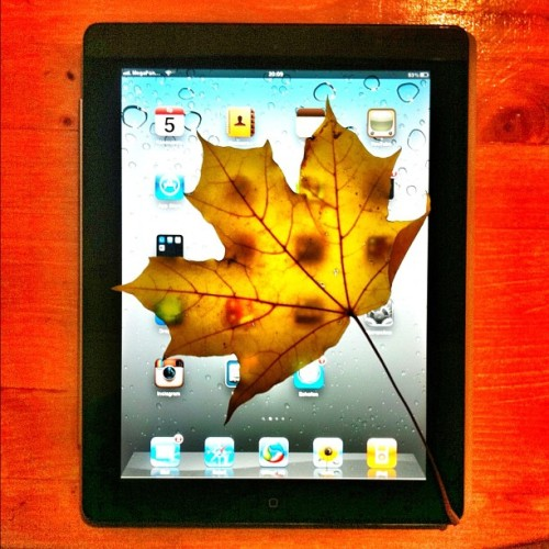 3D обои для iPad / 3D wallpaper for iPad :-) #joke #ipad #wallpaper #autumn  (Taken with Instagram at Старый Арбат / Arbat Street)