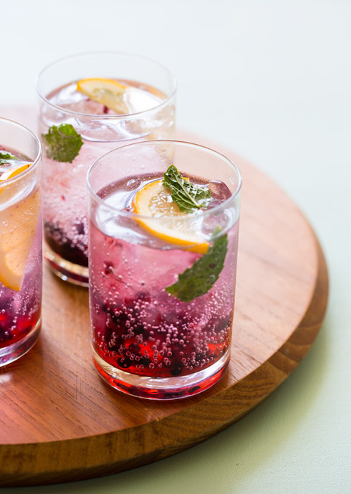 gastrogirl:  blackberry and meyer lemon gin and tonics.