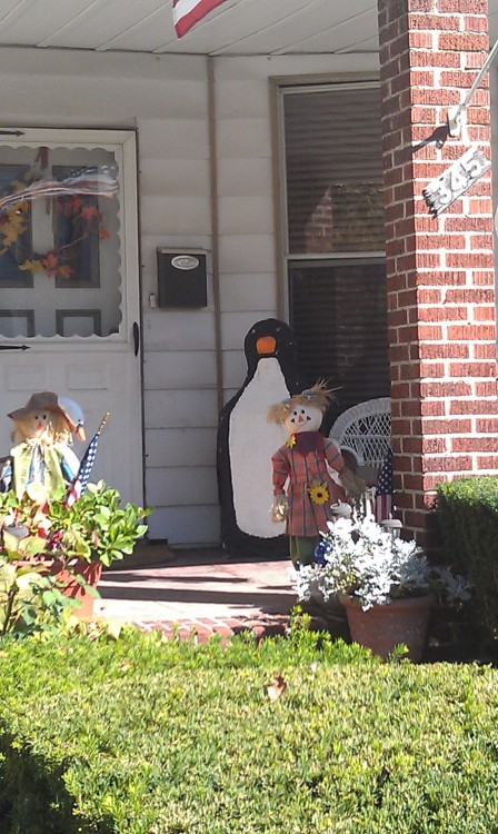 Oh you know, the house with the penguin on the porch. (Bay Ridge)