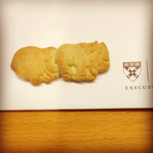Is Harvard trying to create animal cracker centipedes?