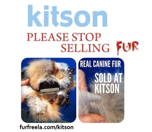 Kitson is knowingly selling coyote, fox, and rabbit fur. They are still selling the SAME Street Level purse they were busted for selling as faux. This bag was tested and confirmed to be CANINE Fur. Unacceptable, Kitson. Please sign and share the Kitson: Please Stop Selling Fur petition—-> www.change.org/kitson