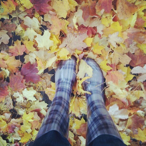 I know it seems backwards but rainy autumn days make me smile #october (Taken with Instagram)
