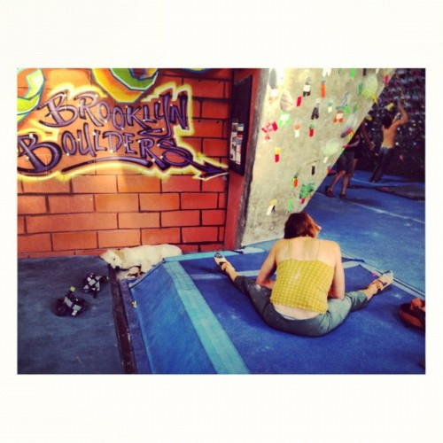 dannyghitis:  Gym dog.  @bkboulders #bouldering #climbing (Taken with Instagram at Brooklyn Boulders)