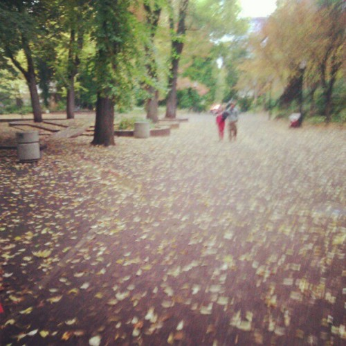 Autumn rain in Portland. (Taken with Instagram)
