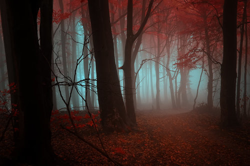 -Strange dream- by *Janek-Sedlar on deviantART on We Heart It. http://weheartit.com/entry/40136579