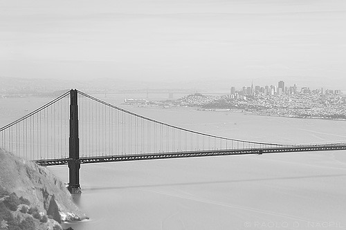 The Bridge Golden Gate Bridge, San Francisco Photographed by: http://capturedphotos.tumblr.com/
