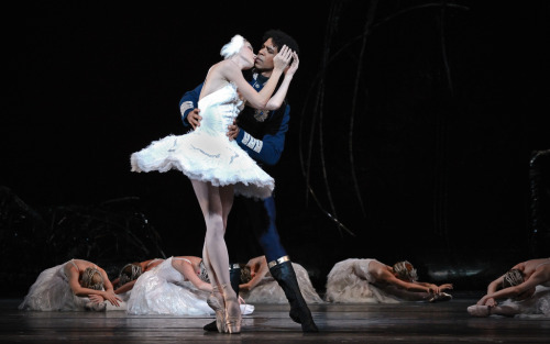 vividus:  Natalia Osipova and Carlos Acosta in Swan Lake. Photo © ROH/Alice Pennefather.