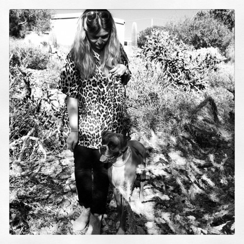 Chic Hiking Outfit! #vintagebymisty #hiking #queenvalley #arizona #boxers #boxer #cactus #rockhunting #leopard  (Taken with Instagram)