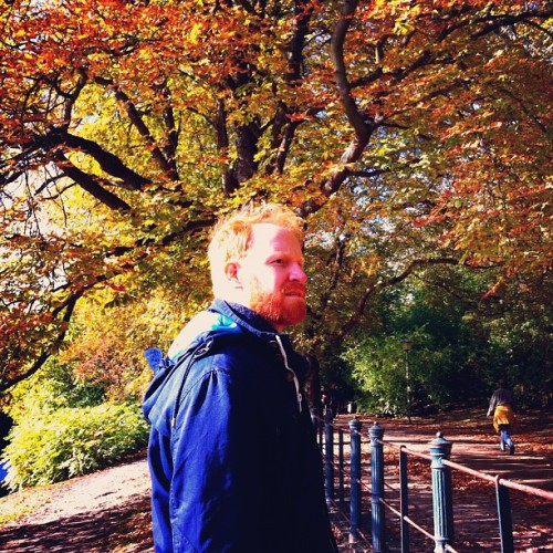 Orange. #berlin #beards #autumn #leaves #tree http://instagr.am/p/QzMXOaliGN/