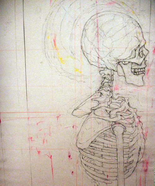 StudyOfAHumanSkull by Burnett Honors College on Flickr.