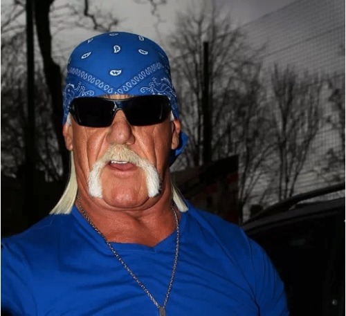 Looks like Hulk Hogan is still managing to keep his sex tape relavant. After local Florida police were unable to assist Hulk in determining who really released the video, Hulk Hogan is now turning to the FBI.