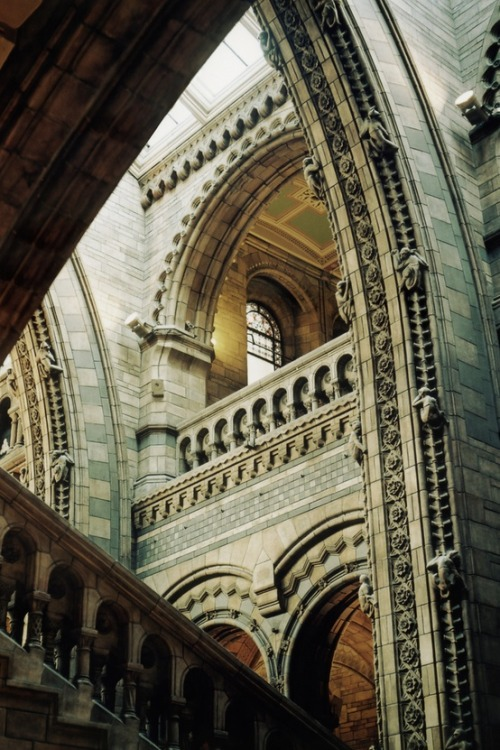 mohindersuresh:  Love and miss this place! Natural History Museum in London!