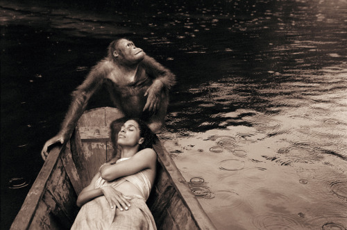 gregorycolbert:  Is it only humans that look up with wonder at the stars and the vastness of the universe?—Gregory Colbert