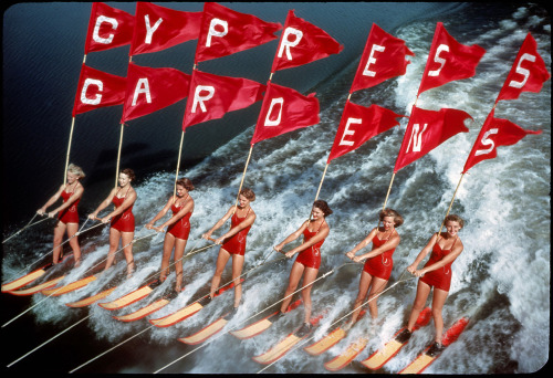 Cypress Gardens, Fla. Visited April 5, 1957 via Shorpy