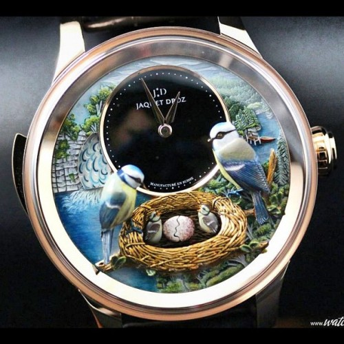 Jaquet Droz Bird Repeater on Watchonista: http://www.watchonista.com/2914/watchonista-blog/news/jaquet-droz-bird-repeater #watches #watchporn #wristshot #wriswatch #watchfreak #watchmaking #watchtagram #horology #jaquetdroz #timepiece #minuterepeater #hautehorlogerie #exclusive #montres #orologi  (Pris avec Instagram)