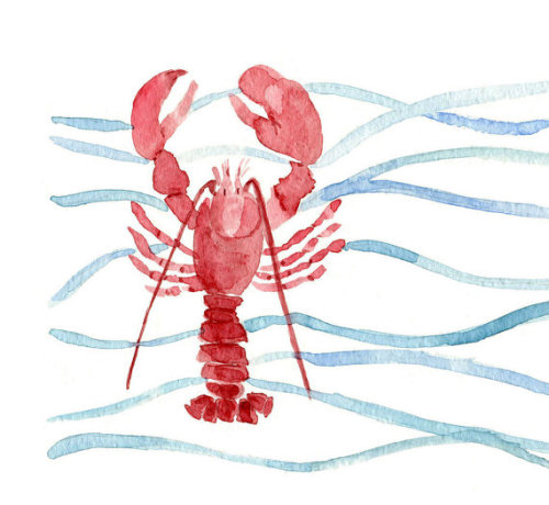 aplaceforart:  Red Lobster art print   more art here