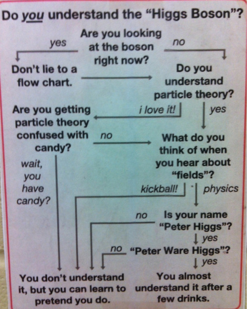 premed-princess:  This flow chart was outside of my advisor's office today and I thought some of you might appreciate it.