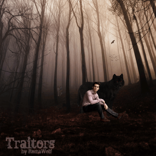 remawolf:  Cover art for Traitors  READ NOW OR BE FOREVER DOOOMED….no really you should read this and the two chapters before if you haven't already…it is a beautifully written Teen Wolf AU fanfic…*whispers* go now~