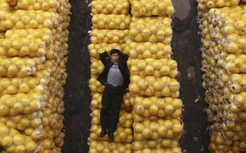 Wuhan, China A fruit sellar sleeps on packs of grapefruit at a market (via Telegraph)
