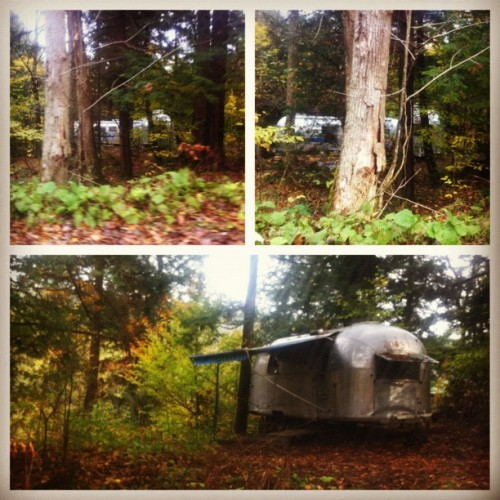 Found an awesome community of classic airstream campers hidden in the trees. #airstream #camping #massachusetts #randr  (Taken with Instagram)