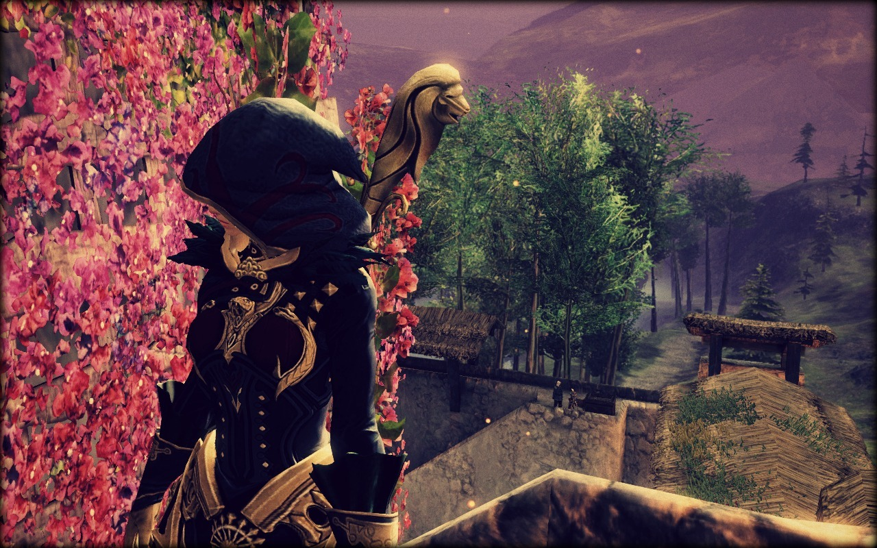 Guild Wars 2 - Location : Krytan Freeholds ©ncsoft