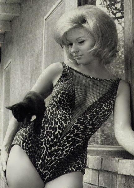 "Nancy Kovack ::  Now that's a ""Hip Kitty"""