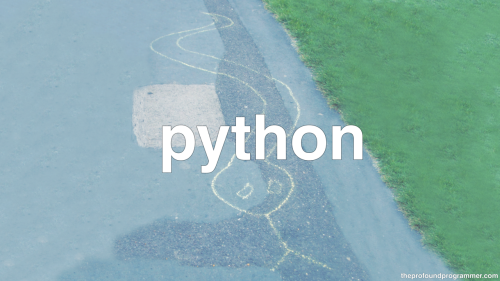 "theprofoundprogrammer:  [text: ""python"", photograph of a python crudely drawn in sidewalk chalk which is known for both its ease of use and its tendency to be generally useless.] [HD Version] [Store]"