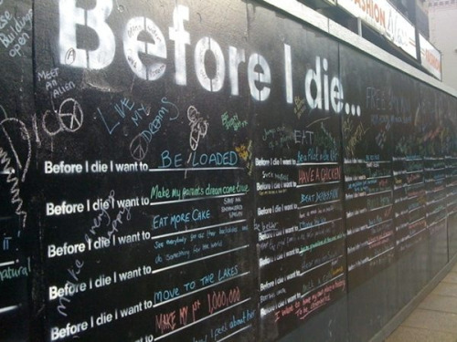 before I die I want to write on the before I die walls in Chicago!