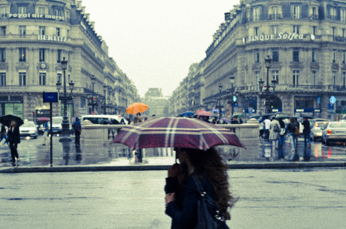 Paris, street (by Lepidoptorologic beauty*)