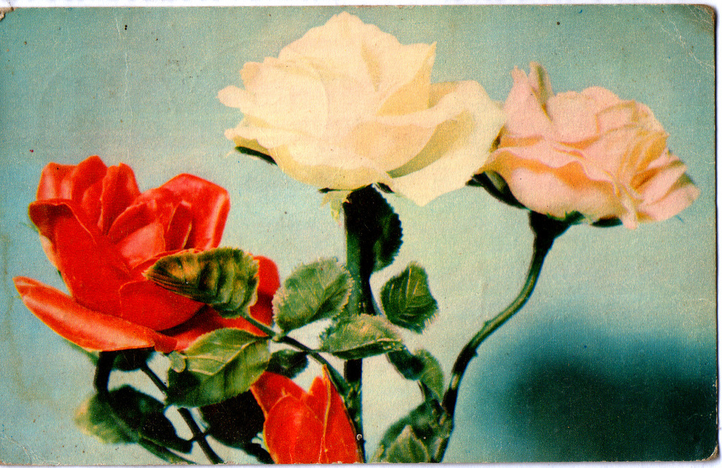 booksvscigarettes:  old postcard printed in Yugoslavia