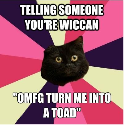 wiccancatmeme:  Submitted by rowenwolf