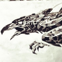 bird of prey. (Taken with Instagram)
