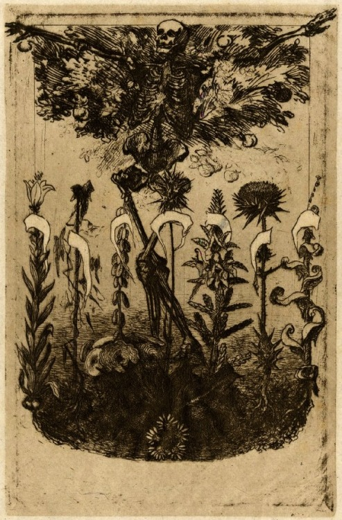 Unpublished frontispiece for Les Fleurs du Mal by Baudelaire. Félix Bracquemond, 1857. (via British Museum)