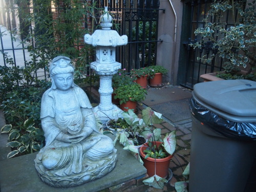 Buddha & Rubbish Bin —West 15th Street