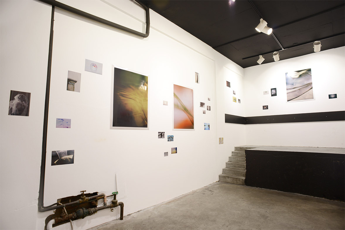 Jacob Ring New Earth installation view Curated by Joseph Allen Shea Catalogue published by Izrock Pressings