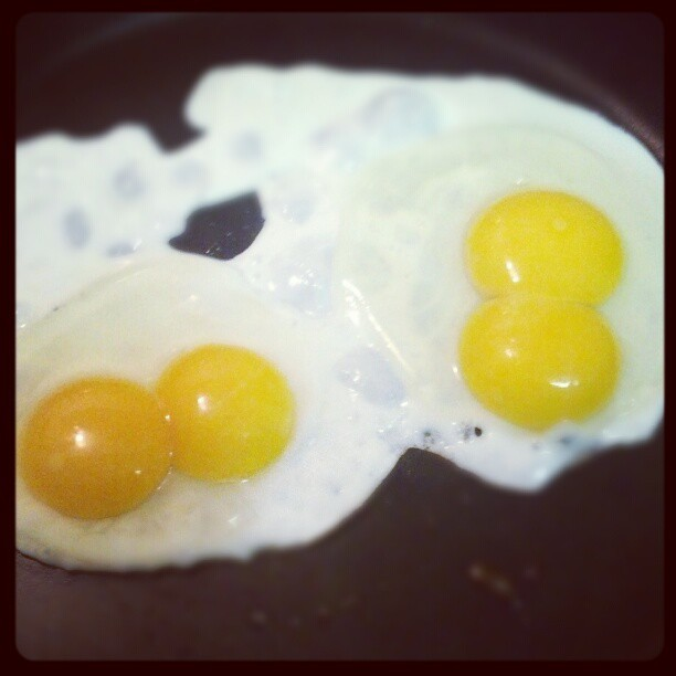 Got these #eggs for #free because the #hatchery can't sell them with #twoyolks. #yummy #kindaweird #protein (Taken with Instagram)