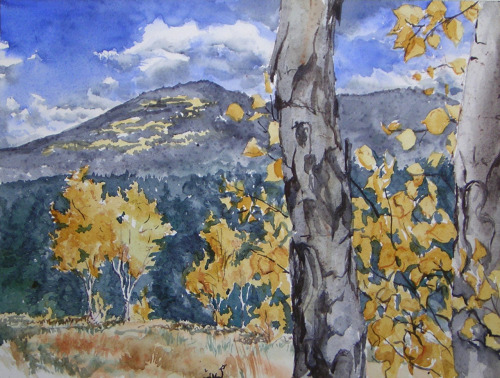Golden Gate Park Aspens, watercolor, October 2012