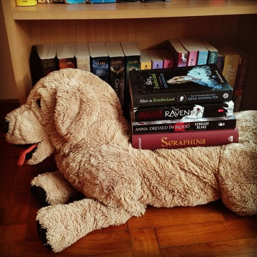 Dogs like new books too! (Taken with Instagram)