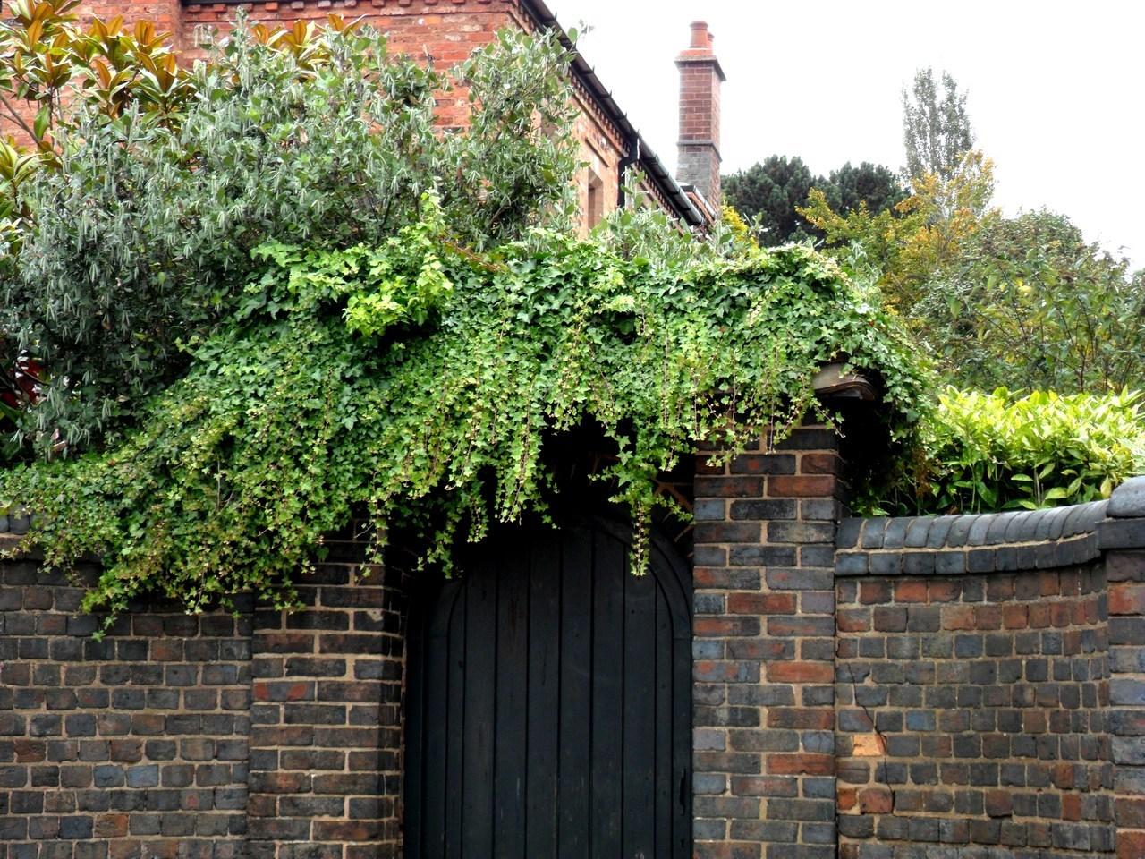 Ivy covered gateway, Walsall Wood Road, Aldridge,West Midlands, England.