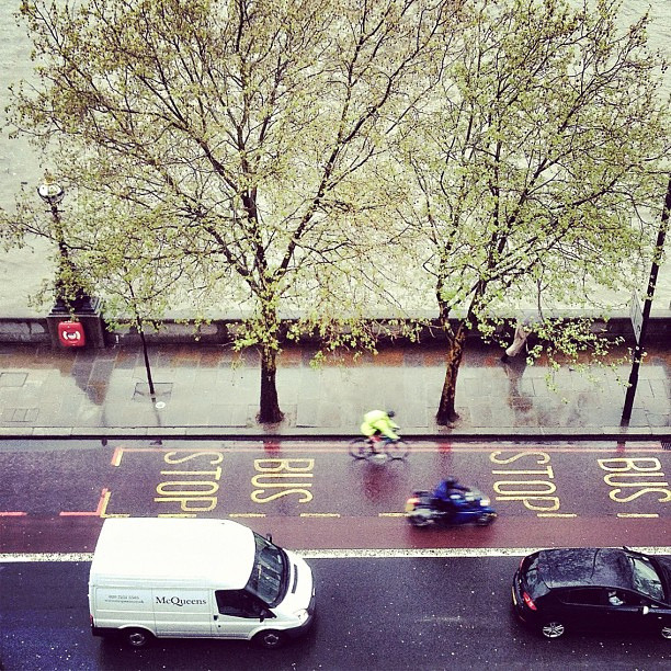 | ♕ |  Along the Thames  | by © Patty Paine | via ysvoice
