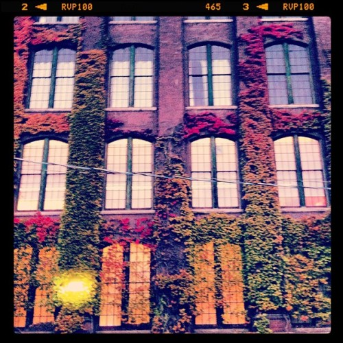 #Sweet #LibertyVillage  (Taken with Instagram)