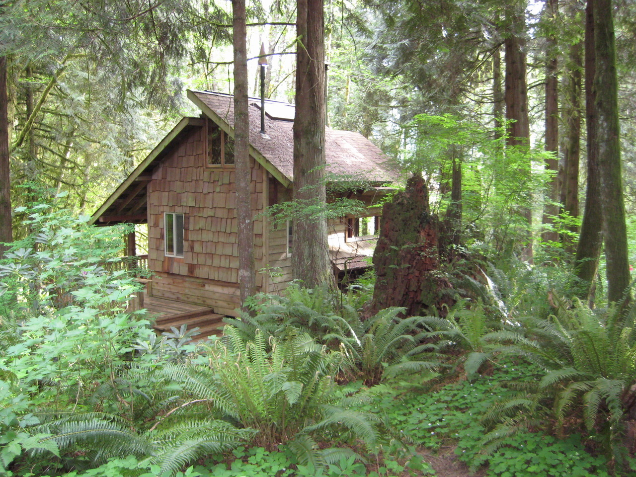cabinporn:  Handbuilt cabin in Washington State. Writes owner Bryan Graham:  Built in 1978 over a nine month period without power tools while living in a tent next to the site. About a week after moving into the cabin, during the night a large alder fell through the middle of the tent. This was home for several years.