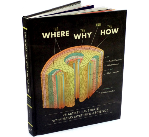 The Where, the Why, and the How: 75 Artists Illustrate Wondrous Mysteries of Science Been a bit quiet on here recently so I'm going to get going on posting some recent news. Firstly I'm pleased to be a part of this great book curated by Julia Rothman. It contains collaborations between scientists and illustrators and you can purchase the book NOW from Amazon!! My illustration answered the question 'Why do humans and ants have so much in common?' and if you missed this illustration I posted a while back, you can see it here!